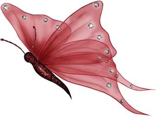 butterfly wallpaper mobile
