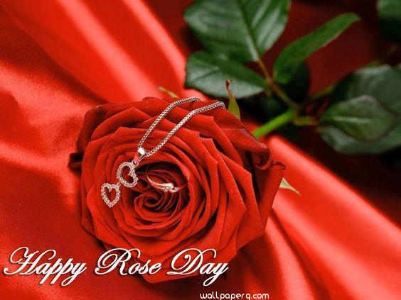 Wishing you happy rose da