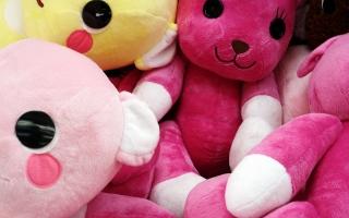 Teddy bunnies