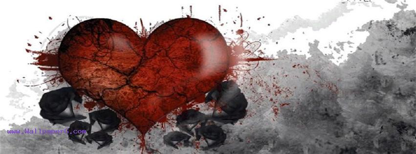 Broken heart black rose fb cover