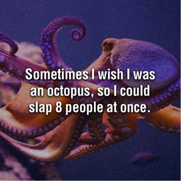 I wish to be an octopus