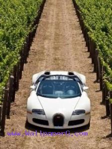 Bugatti 01 ,wide,wallpapers,images,pictute,photos