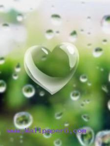 Green love ,wide,wallpapers,images,pictute,photos