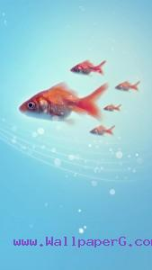 Fishes in water ,wide,wallpapers,images,pictute,photos