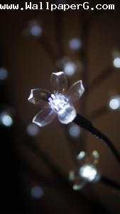 Crystal flower ,wide,wallpapers,images,pictute,photos