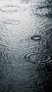 Rain drops 1 ,wide,wallpapers,images,pictute,photos