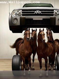 My car have four horse po