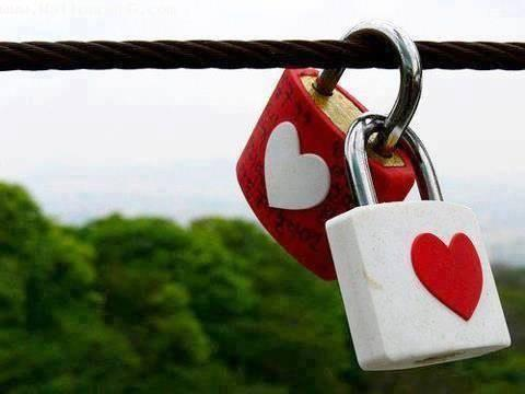 Love locks ,wide,wallpapers,images,pictute,photos
