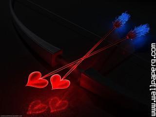 Love (23)