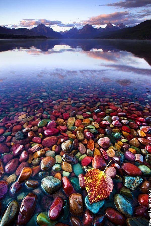 Pebble shore lake