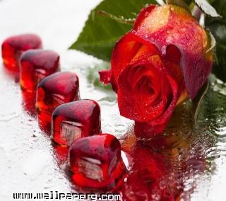 Valentine love(1)
