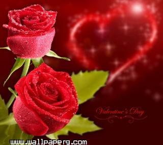 Valentines day(5)