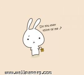 Bunny in love ,wallpapers,images,