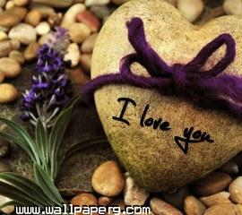 I love you(14)(1) ,wide,wallpapers,images,pictute,photos