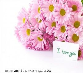 I love you(3)(1) ,wide,wallpapers,images,pictute,photos