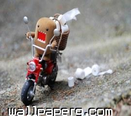 Fast rider ,wide,wallpapers,images,pictute,photos