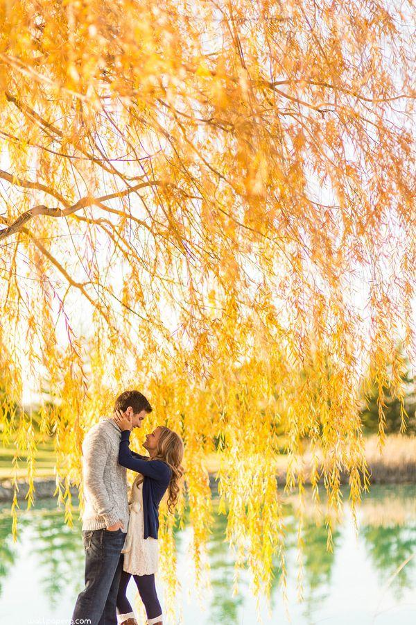 Love all around under the yellow shade ,wide,wallpapers,images,pictute,photos