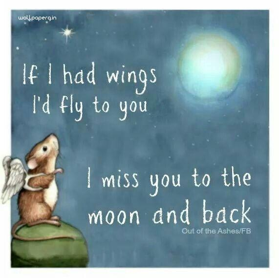 Fly to you wide wallpaper miss you