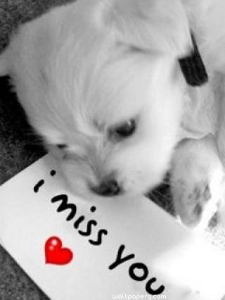 I miss you note ,wallpapers,images,