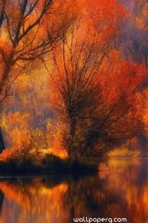 A small autumn ,wide,wallpapers,images,pictute,photos
