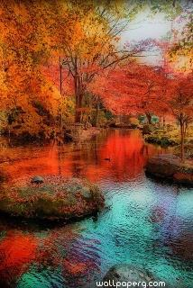 Autumn image ,wide,wallpapers,images,pictute,photos