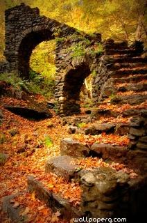 Old stairs with the season autumn