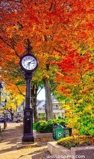 Clock and autumn