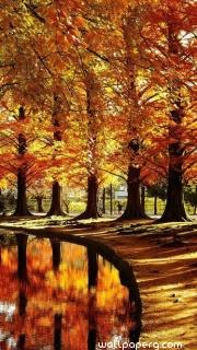 Autumn okayama, japan ,wallpapers,images,