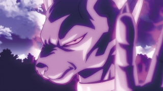 Beerus god dragon ball z