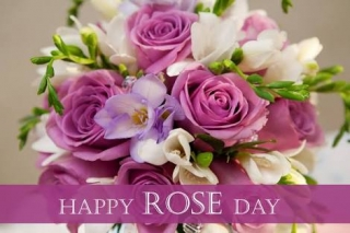Rose day wishing quote image