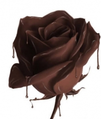 Chocolate rose image