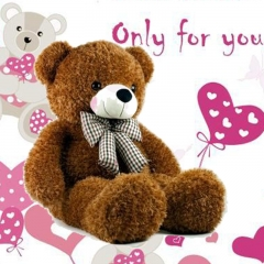 This teddy is only for you