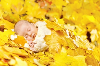 autumn baby  ,wide,wallpapers,images,pictute,photos