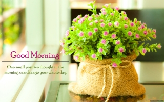 Best good morning quote flowers hd wallpaper ,wide,wallpapers,images,pictute,photos