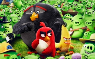 Angry birds animation movie ,wallpapers,images,