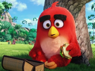 Angry birds movie creepy
