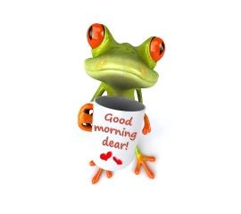 Good morning(3)