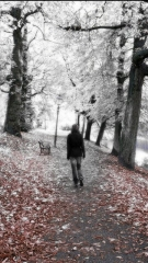 Girl walk alone in forest ,wide,wallpapers,images,pictute,photos