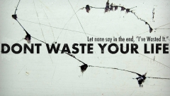 Live your life hd wallpaper for laptop ,wallpapers,images,