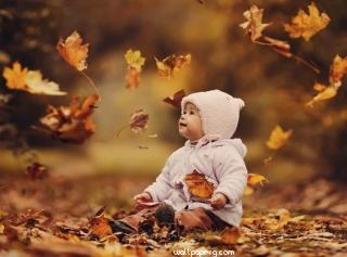 Baby with leaves of autumn hd wallpaper