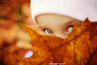 Boy wit leaf hd wallpaper
