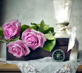 Beautiful roses hd wallpa