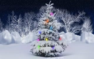 Christmas tree in ice hd wallpaper for laptop mobile
