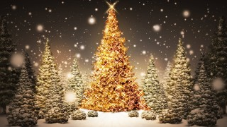 Christmas tree hd wallpaper for mobile laptop
