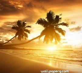 Amazing beach hd wallpape