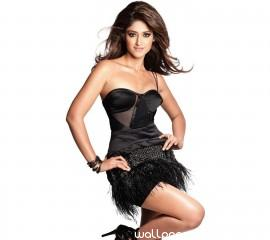 Ileana dcruz hd wallpaper