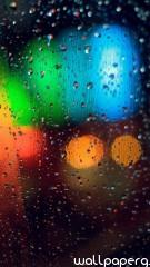 Colorful rainy grass hd w