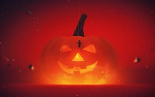 Happyhalloween hd wallpaper