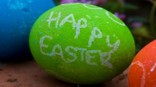 Happy easter hd wallpaper ,wallpapers,images,