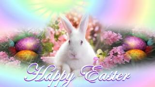 Cute easter greeting image